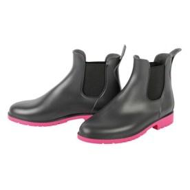 boots-harrys-horse